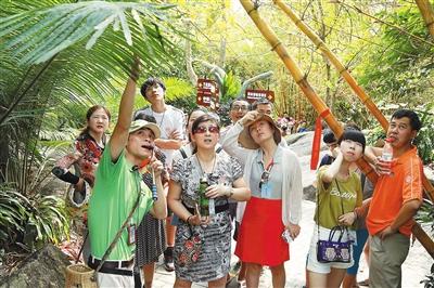海南日报数字报-好导游:行走天地 温暖旅途