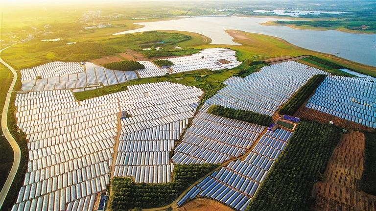 11月8日,夕阳映照在儋州市海头镇500亩塑料设施大棚上.