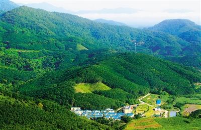 白沙黎族自治县元门乡罗帅村掩映在青山绿树之间