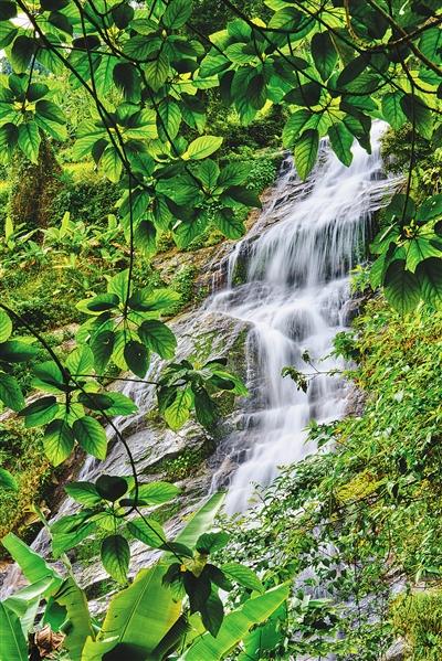 海南日报数字报-百花岭瀑布下的小镇