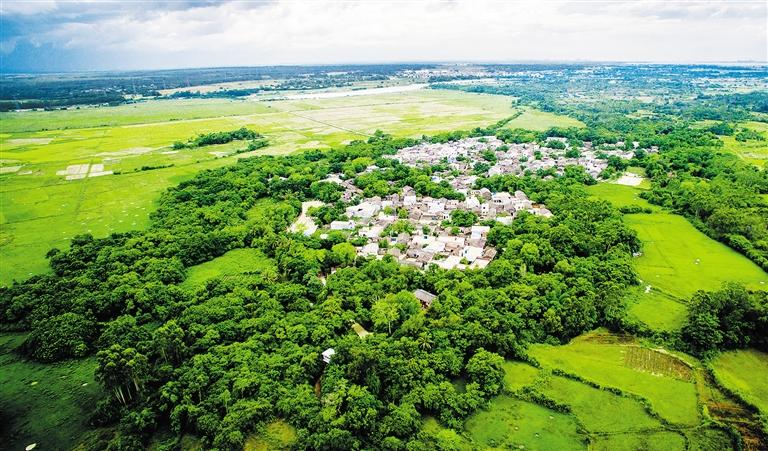 高空俯视绿色风景图片
