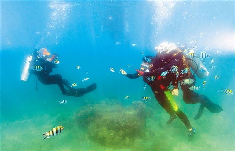 5月1日,在国家5a级景区陵水分界洲岛旅游区,游客在海底体验潜水