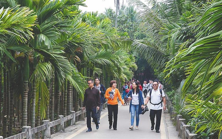 海南日报数字报-感受美丽乡村生态文明建设成果