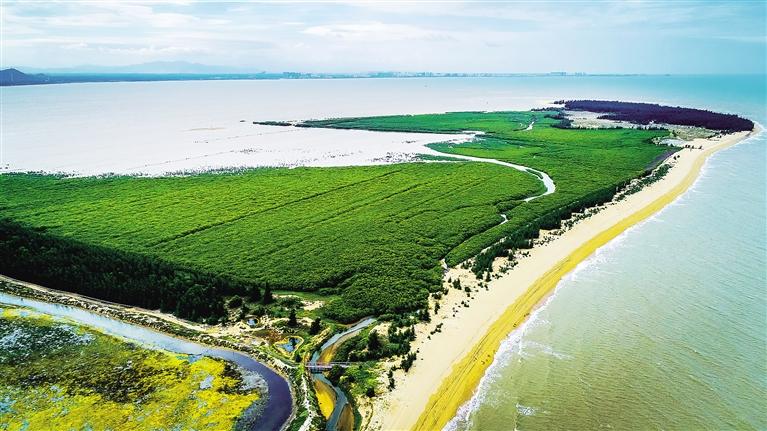 """海南建立保护修复制度 湿地逐步告别""""自然""""保护"""