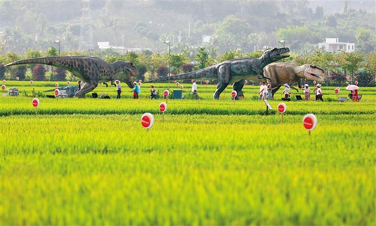"""国家南繁科研育种基地:海南南繁走向世界的中国""""种业硅谷"""""""
