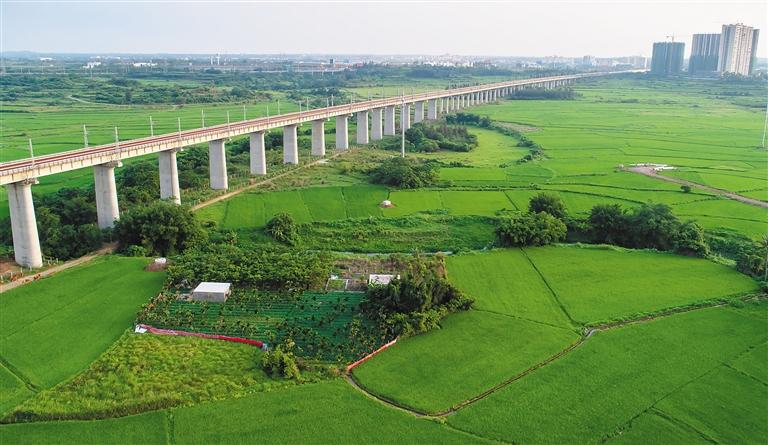 澄迈县老城镇龙吉村,环岛高铁穿越乡村绿色田野.