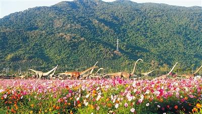 """三亚海棠湾水稻国家公园,""""恐龙""""在花海里形成独特景观.图片"""