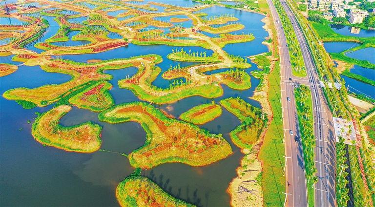 海口江东新区迈雅河区域生态修复项目示范区渐露倩影