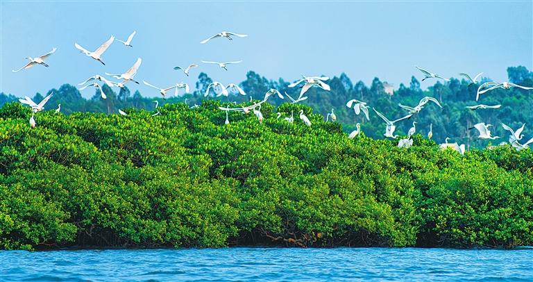海南省持续推进国家生态文明试验区建设