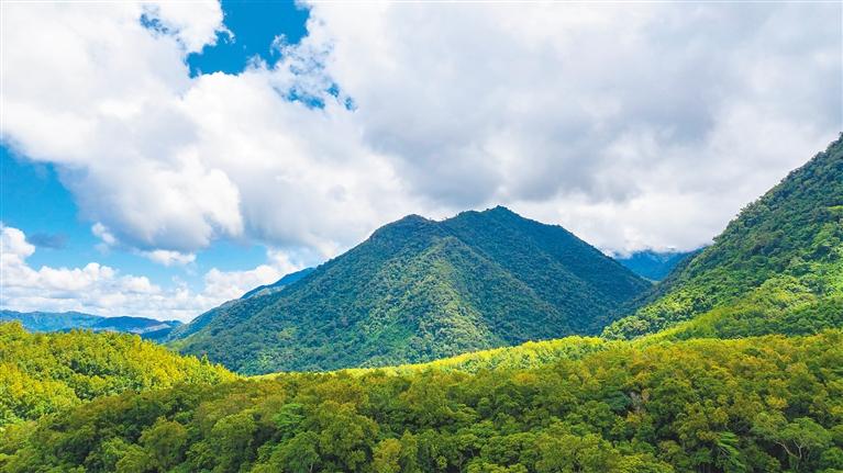 """海南热带雨林国家公园:生态好不好?GEP来""""算账"""""""