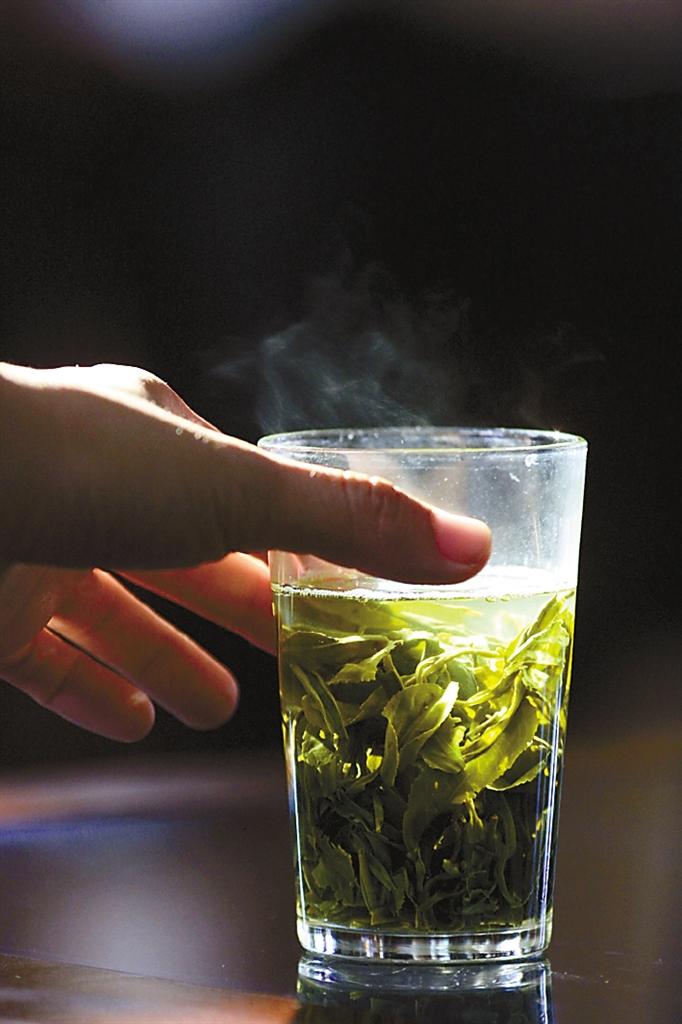 清明踏青采茶游,品味海岛茶文化(图4)